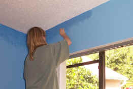"Painting the ""sky"""