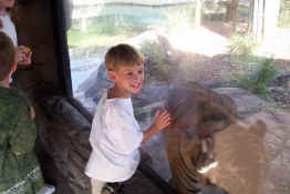 This was one of his favorite things at the zoo